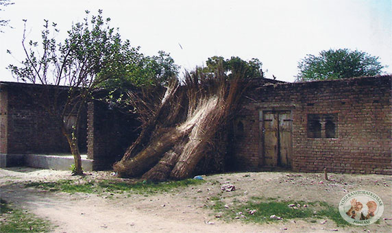 His house at nardara